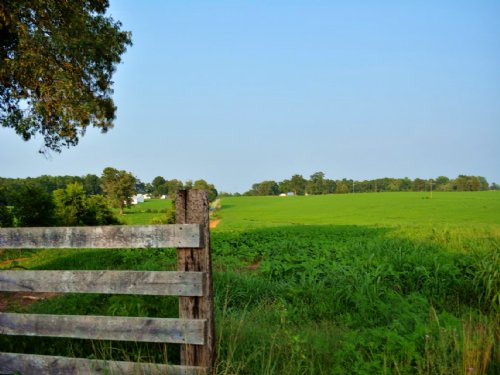 Income Producing Farm : Scottsville : Albemarle County : Virginia