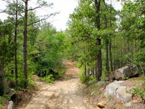 4.49 Acre Trophy Ridge Iii, Creek. : Clayton : Pushmataha County : Oklahoma
