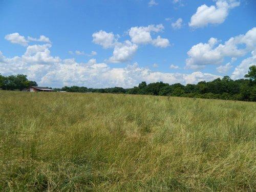 17.37 Acres Fenced Pasture / Creek : Danielsville : Madison County : Georgia
