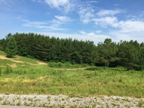 5.60+/- Acres In The Ridges : South Pittsburg : Marion County : Tennessee