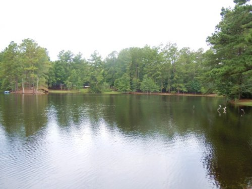 Willow Pond : Sylvania : Screven County : Georgia