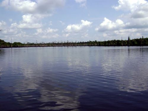 Lake Mary Lot .43 Acres : Woodville : Wilkinson County : Mississippi