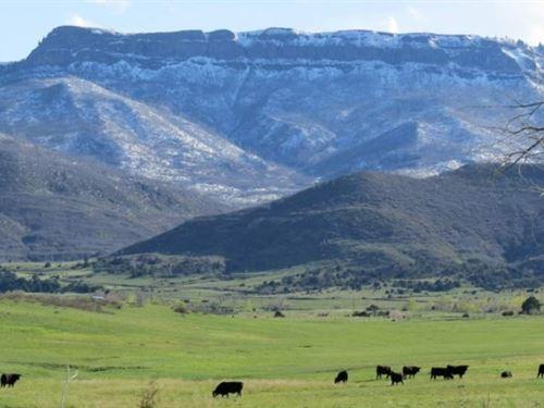 Sandoval Ranch : Trinidad : Las Animas County : Colorado