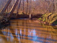 Priced To Sell - River Frontage &Am : Crawfordville : Taliaferro County : Georgia