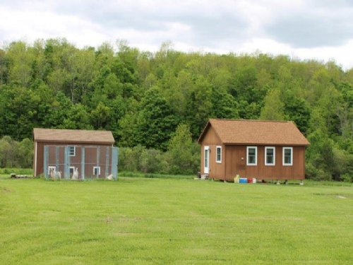 S. Tier Cabin Near State Forest : Smyrna : Chenango County : New York