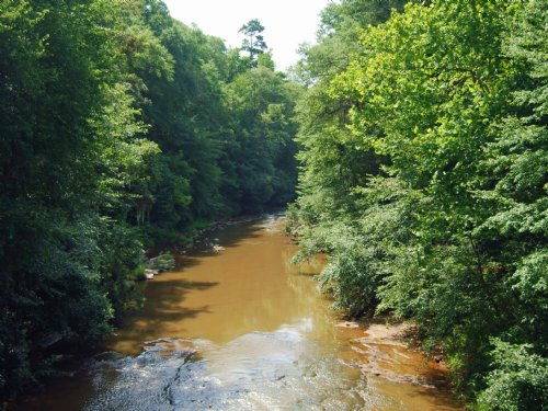 Hannahatchee Tract : Louvale : Stewart County : Georgia