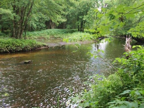 Building Lots With Fish Creek Acces : Camden : Oneida County : New York