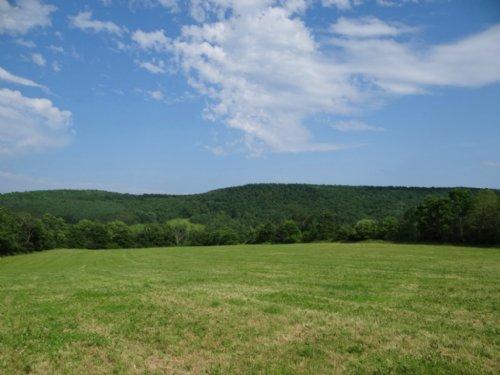 Farmland And Woodlands Near Ithaca : Berkshire : Tioga County : New York