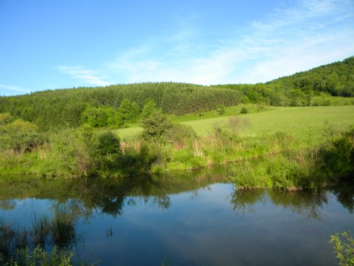 Large Country Acreage With Stream : Berkshire : Tioga County : New York