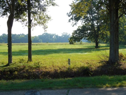 One Acre Lot In Cocoville : Mansura : Avoyelles Parish : Louisiana
