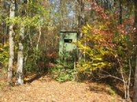 80 Ac Great Hunting And Timber : Billingsley : Autauga County : Alabama