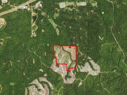 Johnson 125 : Carthage : Leake County : Mississippi
