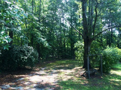Alexander City Development Property : Alexander City : Tallapoosa County : Alabama