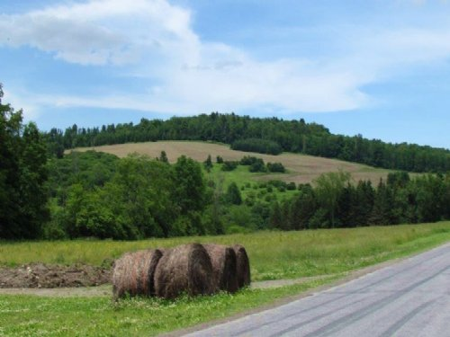 House Farmland Pole Barn 71 Acres : Cuyler : Cortland County : New York