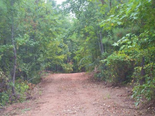 180+/- Ac Saugahatchee Creek : East Tallassee : Tallapoosa County : Alabama