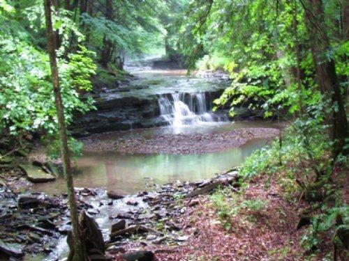 Land Near State Forest Driveway : Lincklaen : Chenango County : New York