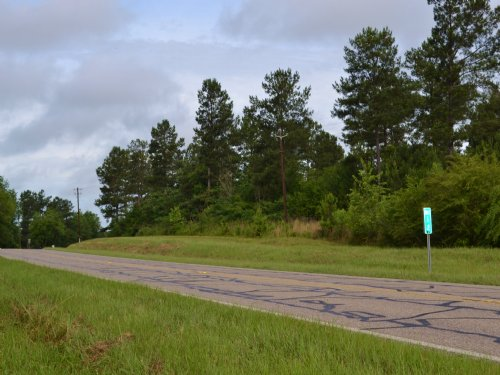 Holtville Lot B 16 +/- Acres : Holtville : Elmore County : Alabama
