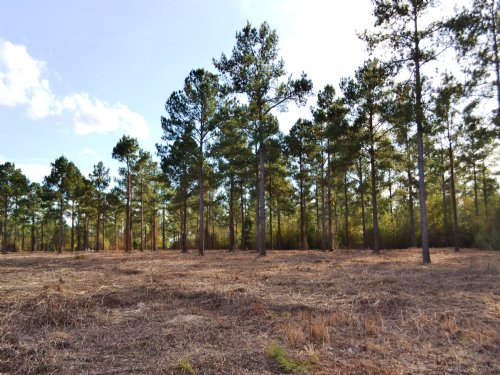Holtville, Al Lot D 20 +/- Acres : Holtville : Elmore County : Alabama