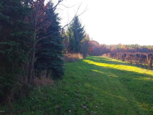 One Of A Kind Property : Kalamazoo : Michigan