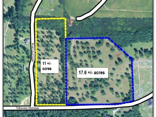 17.6 +/- Acre Homesite : Eclectic : Elmore County : Alabama