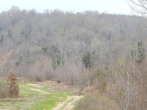 640.75 Acres In Yazoo County : Bentonia : Yazoo County : Mississippi