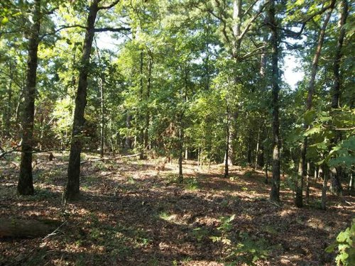 56 M / L Acres : Tahlequah : Cherokee County : Oklahoma