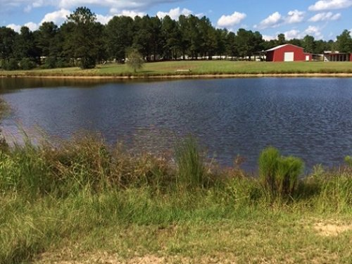 45 Acres : State Line : Greene County : Mississippi