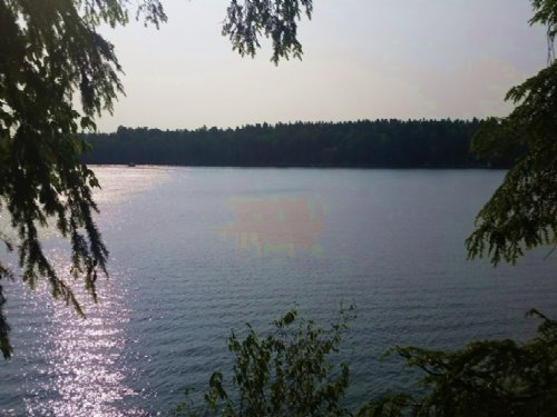 Waterfront Land Private Lake 25 Ac : Theresa : Jefferson County : New York