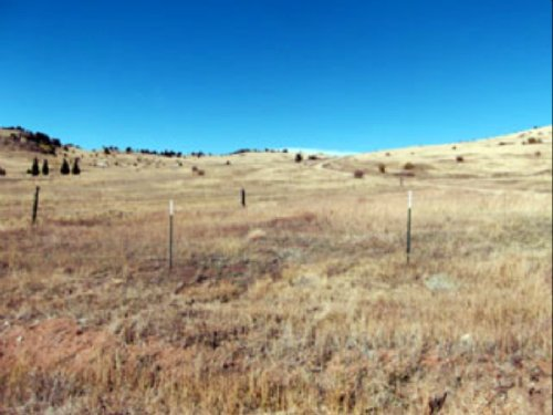Homesite For Sale - .3 Acres : Cripple Creek : Teller County : Colorado