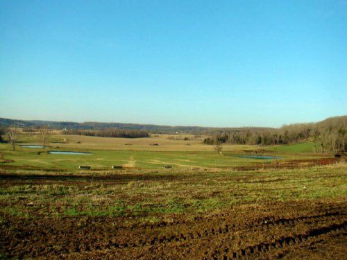 428 Acres For Cattle, Crops & Home : Falcon : Laclede County : Missouri