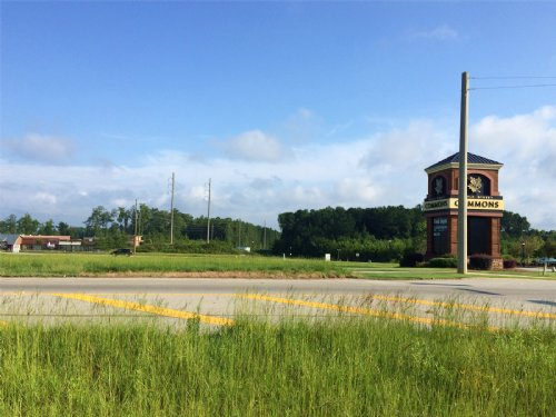 1.319± Acre Commercial Tract : Carrollton : Carroll County : Georgia