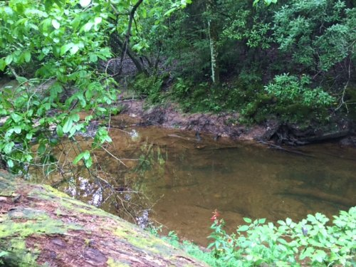 10+/- Acres Unrestricted / Creek : Sequatchie : Marion County : Tennessee