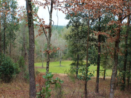 330 Acres W/ Lodge : Chattahoochee : Gadsden County : Florida