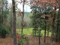 330 Acres W/ Lodge : Chattahoochee : Gadsden County : Florida