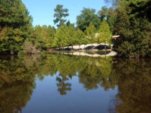 Hunting Lodge For Sale, Lake, Creek : Roxie : Franklin County : Mississippi