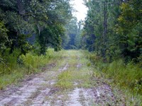 St Marks River Ranch : St. Marks : Wakulla County : Florida