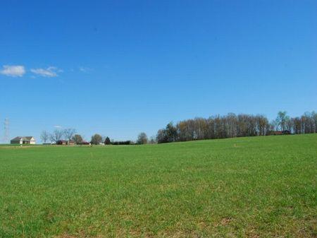 11 Acre Pasture Site : Inman : Spartanburg County : South Carolina