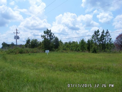 10 Ac Close To Town-road Frontage : Odum : Wayne County : Georgia