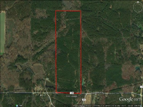 120 Acres For Sale : Walthall : Webster County : Mississippi