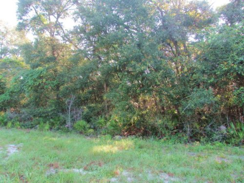5 Acres On Paved Road (770626) : Old Town : Dixie County : Florida