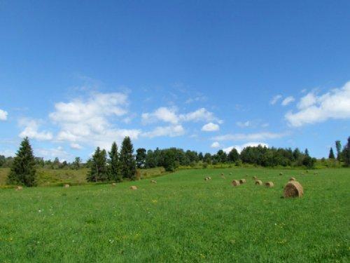Organic Farmland Fenced Pastures : Lapeer : Cortland County : New York