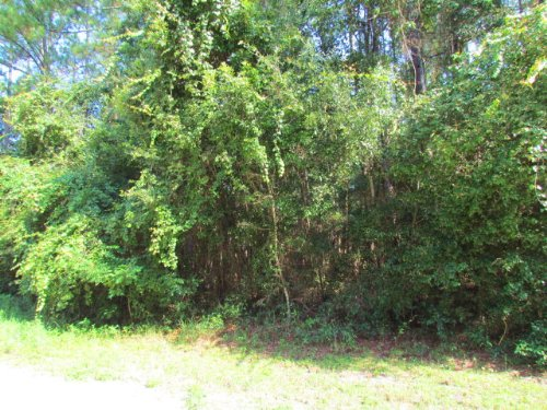 Lovely 3.15 Acre Tract 770628 : Old Town : Dixie County : Florida
