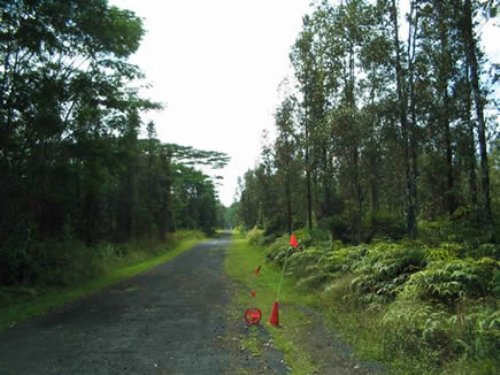 1/4 Acre Nanawale Estates,flower Rd : Pahoa : Hawaii County : Hawaii