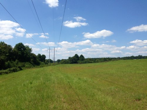 79 +/- Ac : Brundidge : Pike County : Alabama