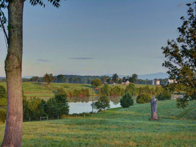 High Point Farm 2 : Somerset : Orange County : Virginia