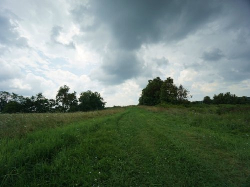 Woodyard Hill Rd - 290 Acres : Chesterhill : Morgan County : Ohio