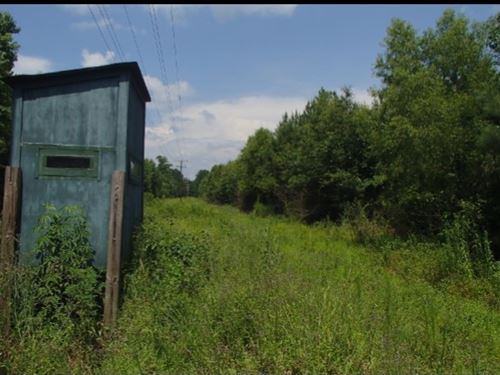 224.47 Acres In Leake County, Missi : Carthage : Leake County : Mississippi