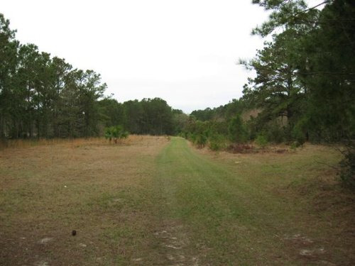 107.99 Acres : Beaufort : South Carolina