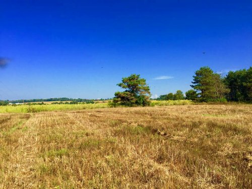 24 +/- Acres Land For Sale : Stillwater : Columbia County : Pennsylvania
