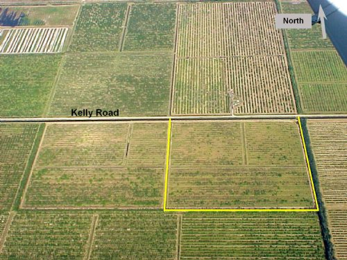 39Ac Agricultural Or Homesite Tract : Fort Pierce : Saint Lucie County : Florida